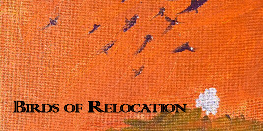 Interview: Eric Peters on Birds of Relocation