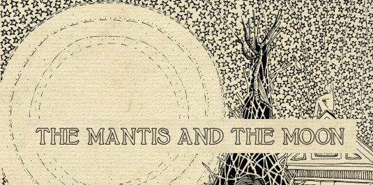 The Mantis and the Moon