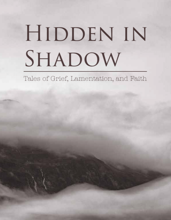 Hidden in Shadow cover art, gray clouds with dark text